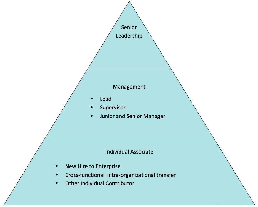 develop-diagram